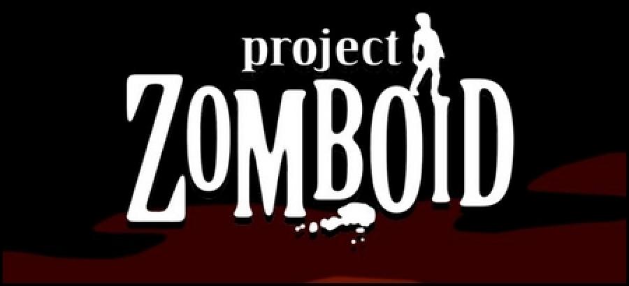 Version von Project Zomboid vom 29.
